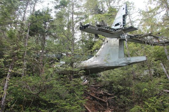 Plane-crash-site-tofino