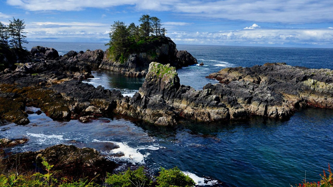 Tourism Tofino - Coastal Charters